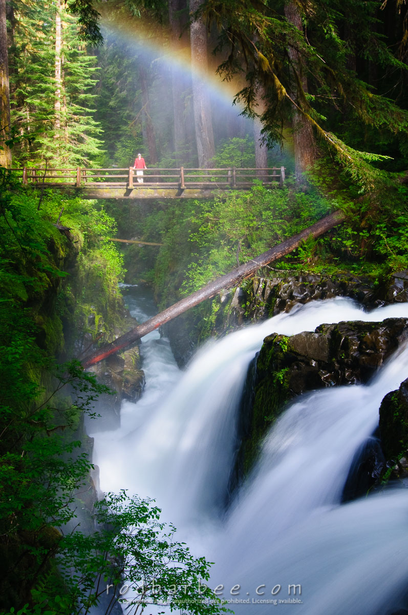Barbee_080626_3_7455 |  Person standing on the bridge over Sol Duc Falls, with rainbow. Olympic National Park, WA