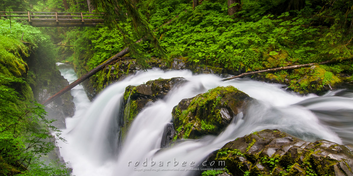 Barbee_110714_3_7782 |  Sol Duc Falls, Olympic National Park, WA