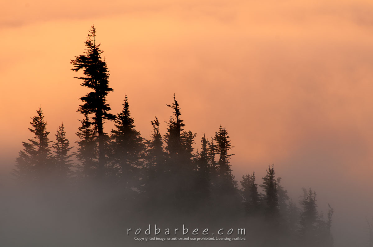 Barbee_140725_3_5942 |  Sunrise and cloud formations from Hurricane Ridge, Olympic National Park, WA