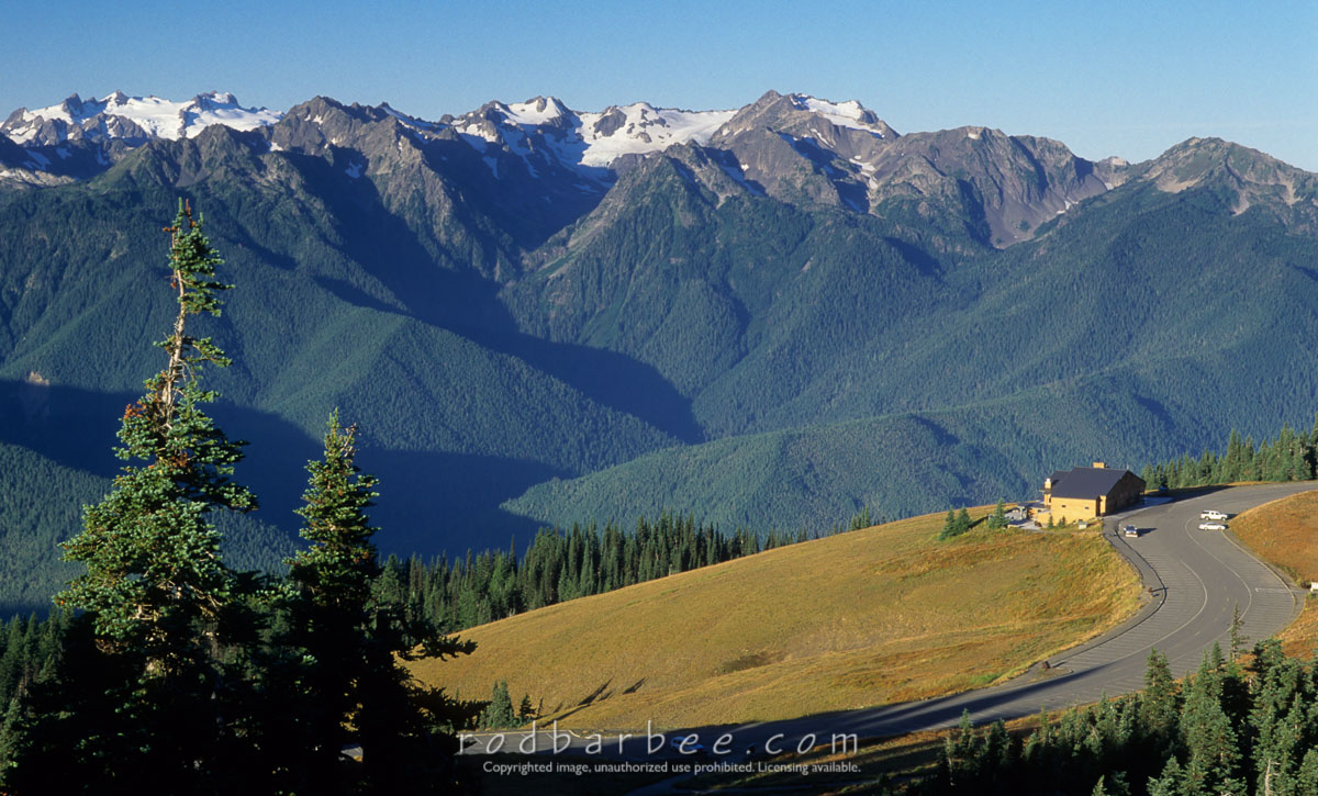 barbee_11870 |  Hurricane Ridge Visitors Center and Olympic peaks, Olympic National Park, WA