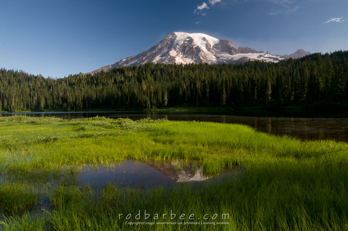 Barbee_090804_3_1785 |  Mt. Rainier from Reflection Lake