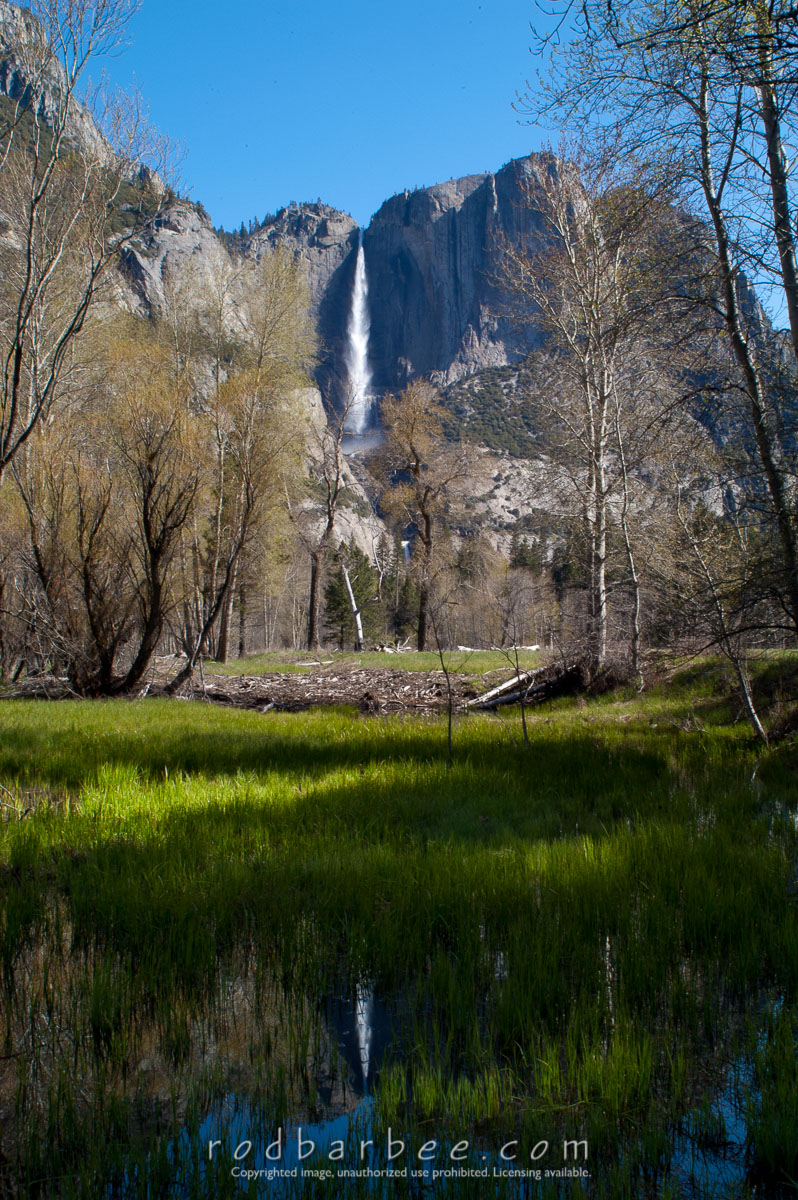 Barbee_030511_1_0127 |  Yosemite Falls from near Swinging Bridge