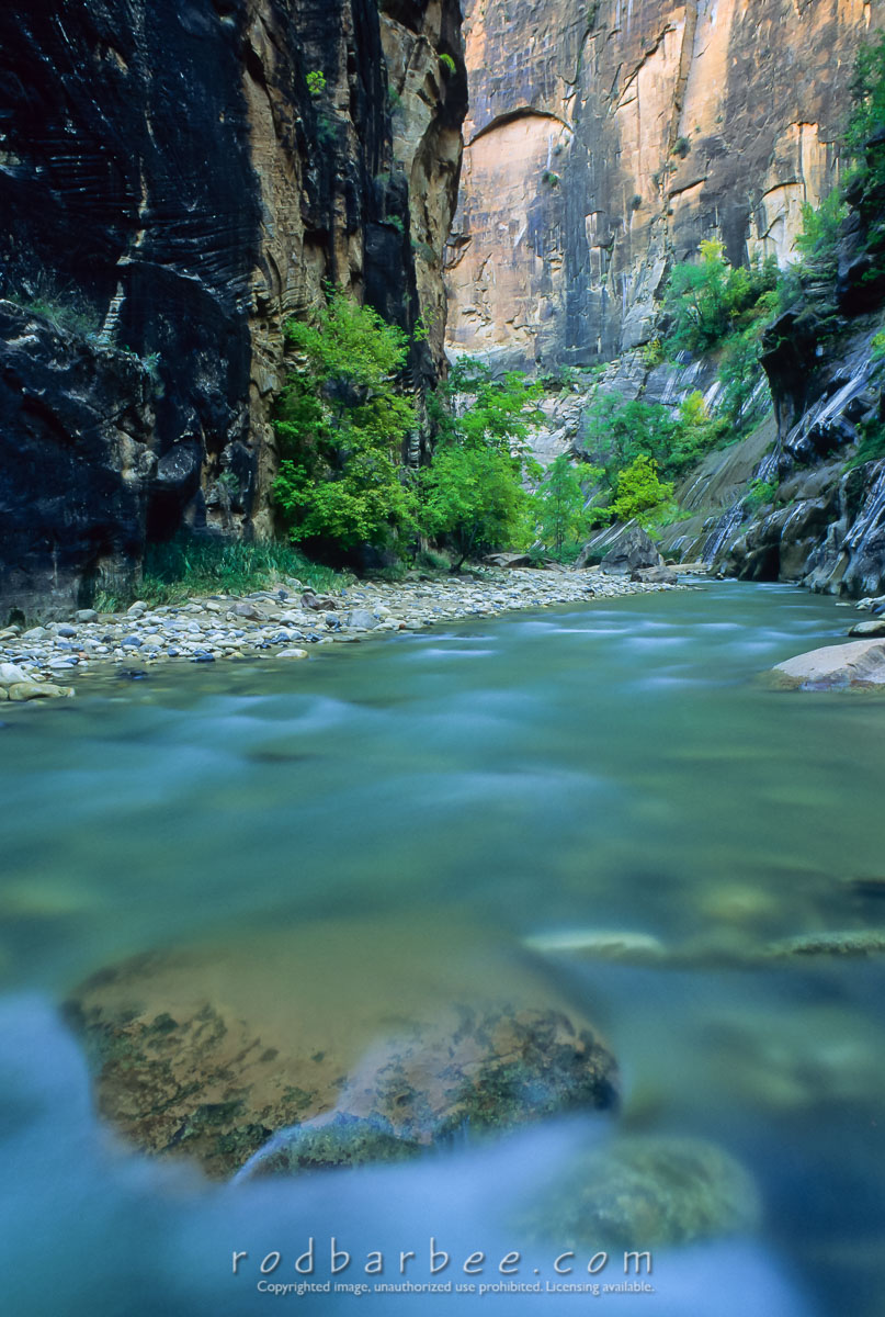 barbee_10861 |  The Narrows. Virgin River, Zion National Park, UT