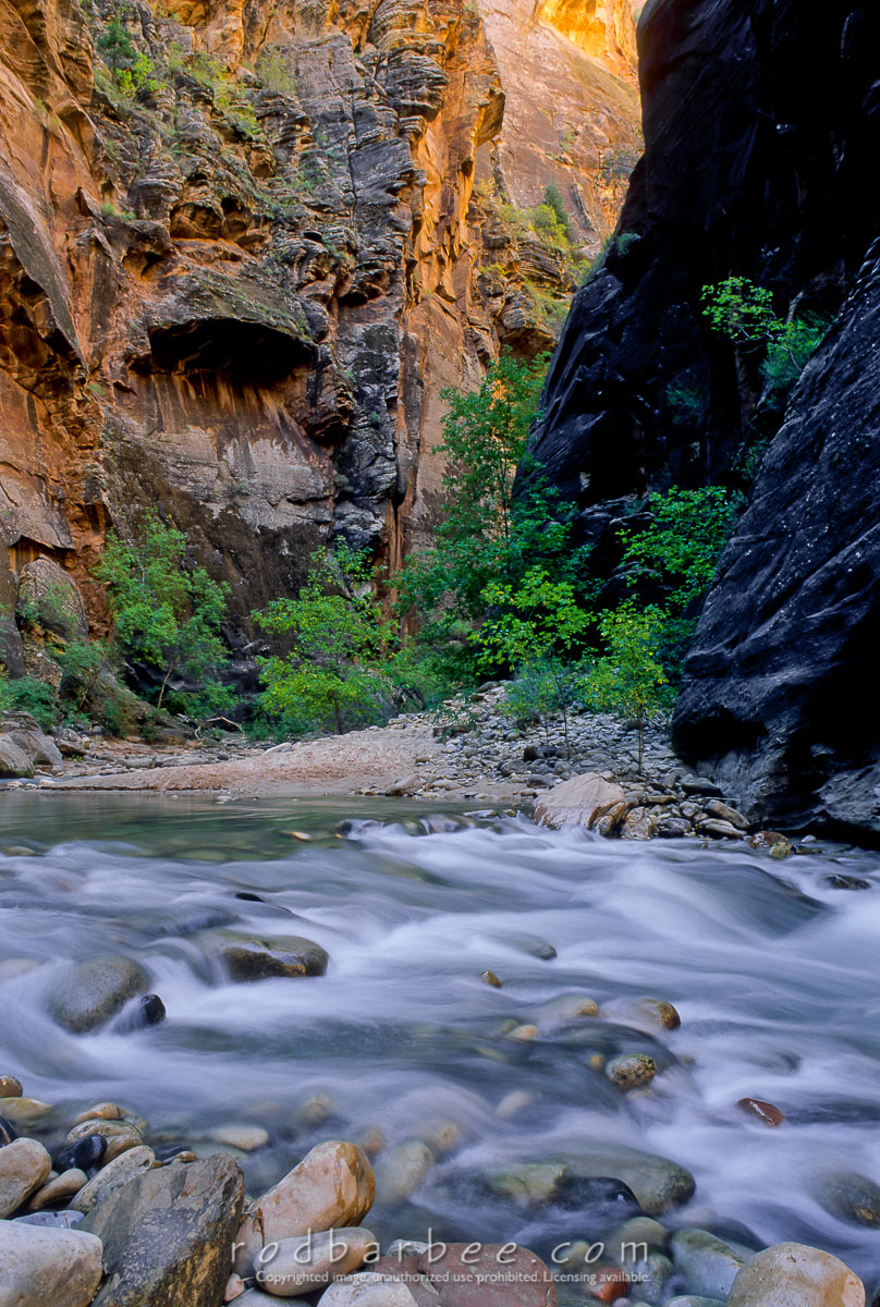 barbee_10897 |  The Narrows of the Virgin River, Zion National Park, UT