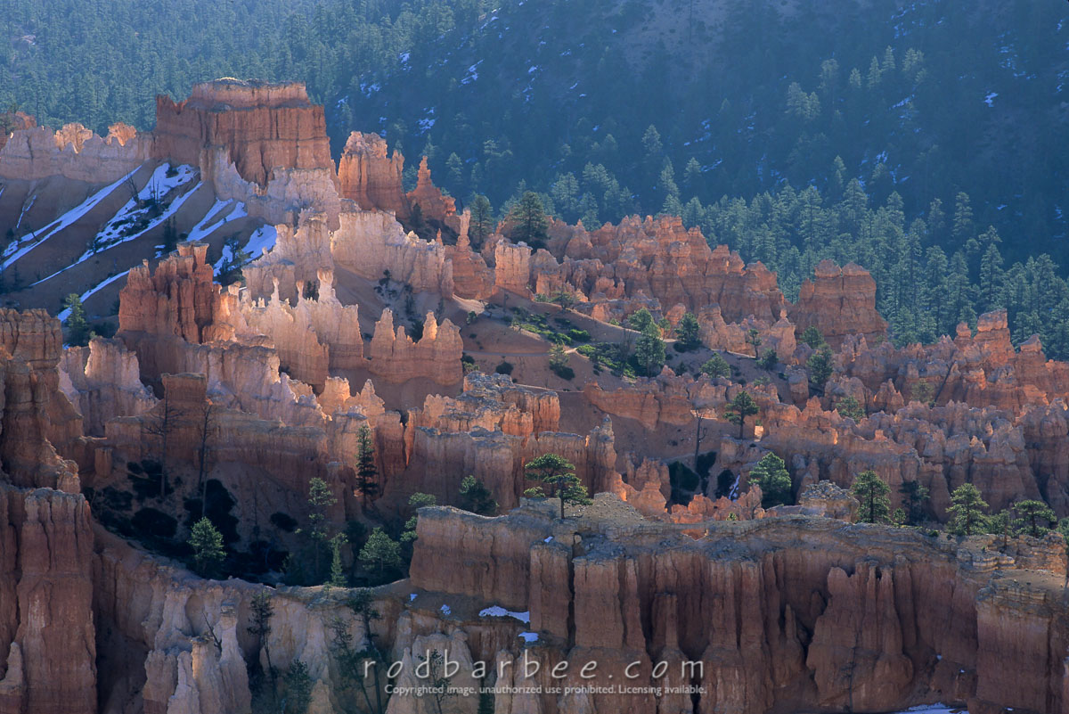 barbee_11415 |  Backlit Hoodoos at sunrise from Upper Inspiration Point, Bryce Canyon National Park, UT