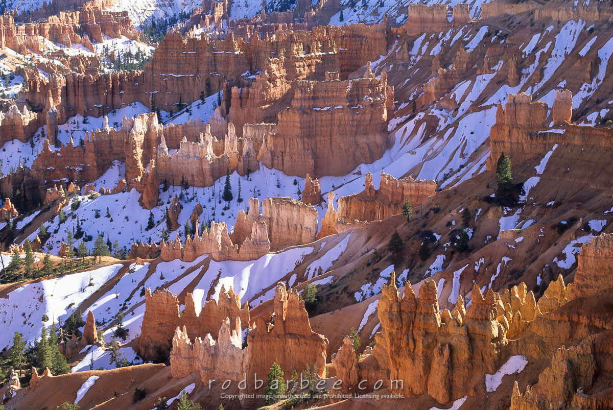 barbee_11456 |  Hoodoos and snow from Sunset Point, Bryce Canyon National Park, UT