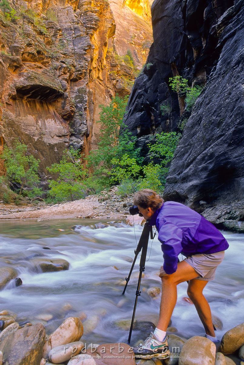 barbee_11596 |  My friend Mike photographing in the Narrows of the Virgin River, Zion National Park, UT. The Narrows is a popular hike for visitors of Zion.