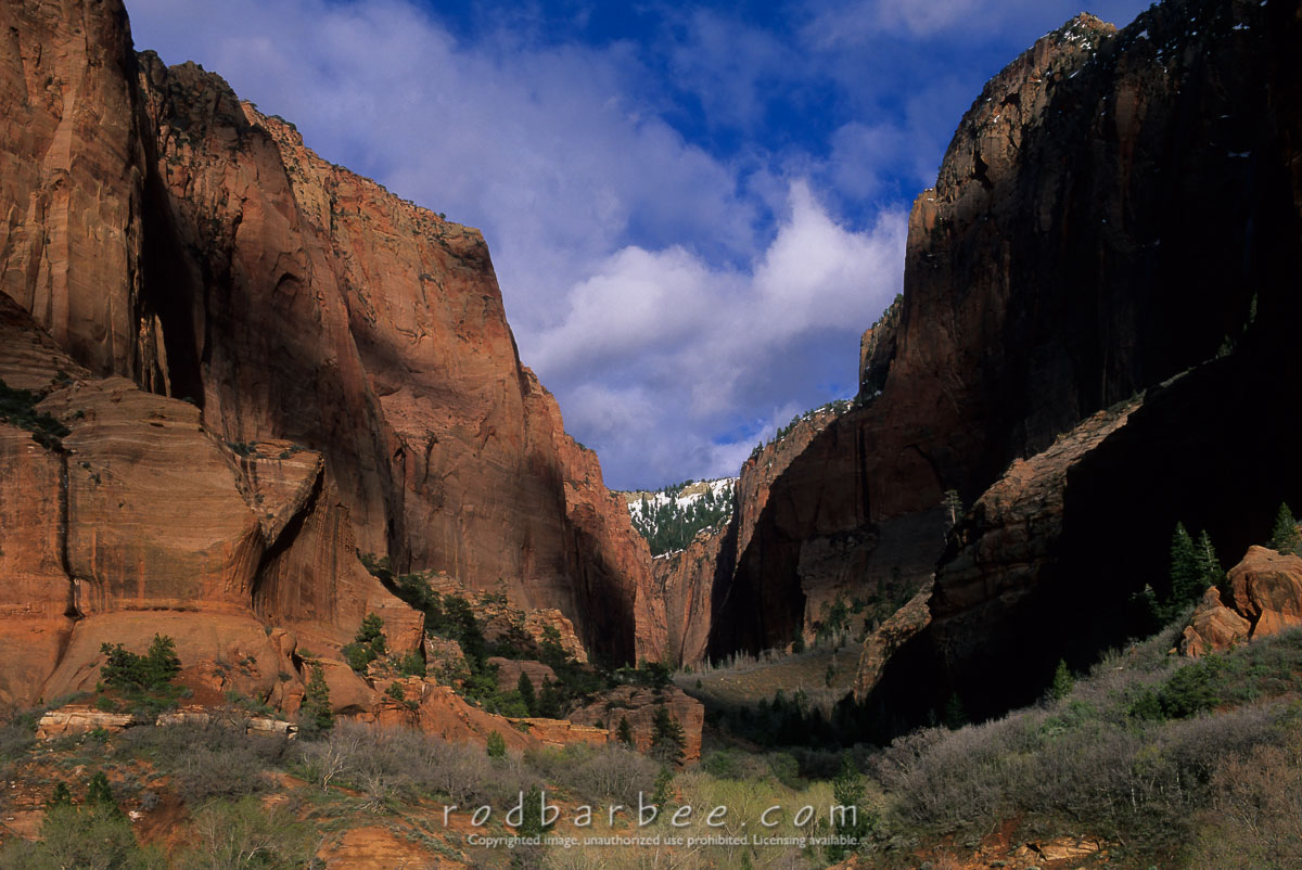 barbee_13576 |  South Fork Taylor Creek Canyon, Zion National Park, UT