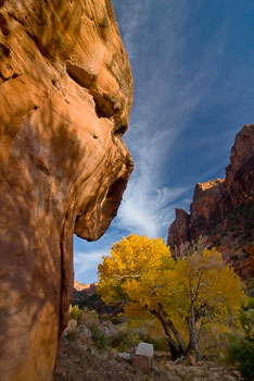 Zion and Bryce Canyon