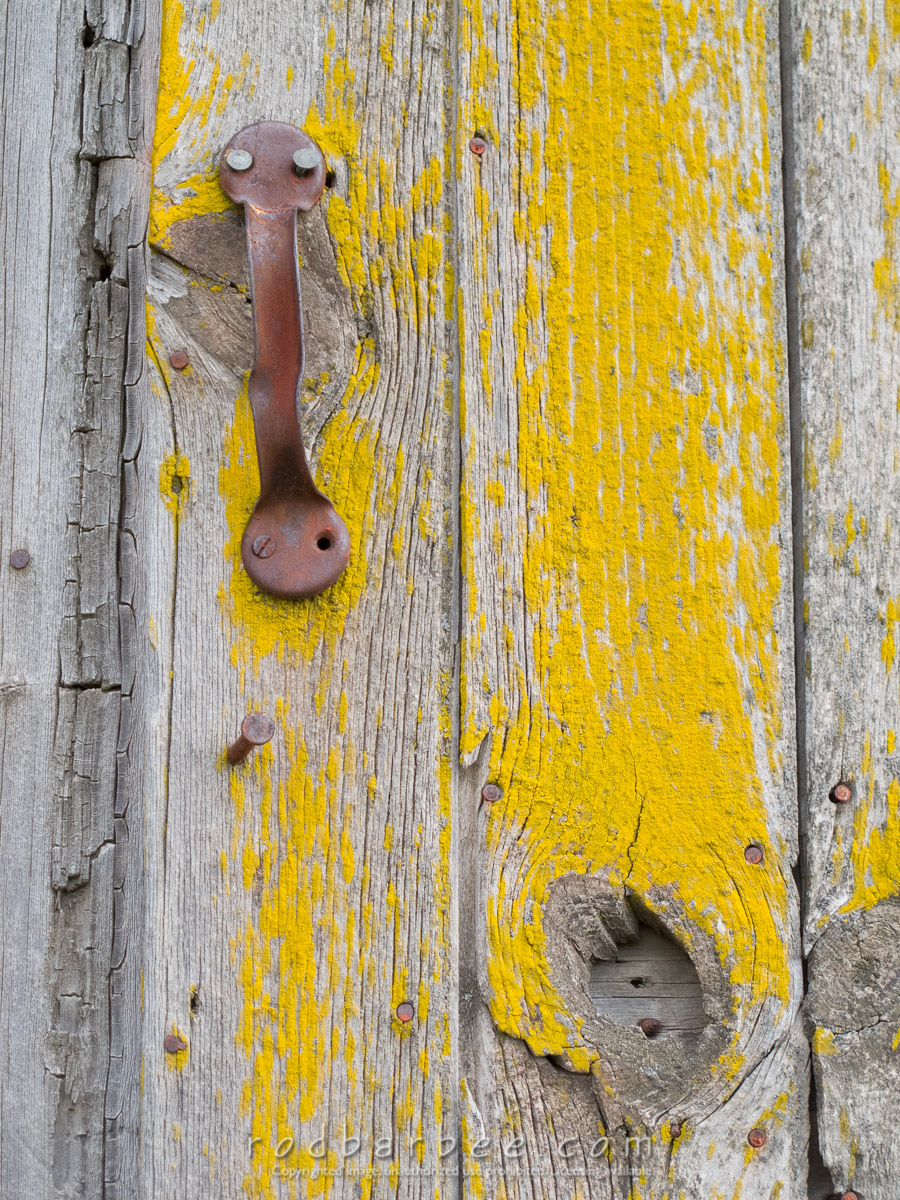 Barbee_100618_G11_0540 |  detail on old barn, yellow lichen on wood