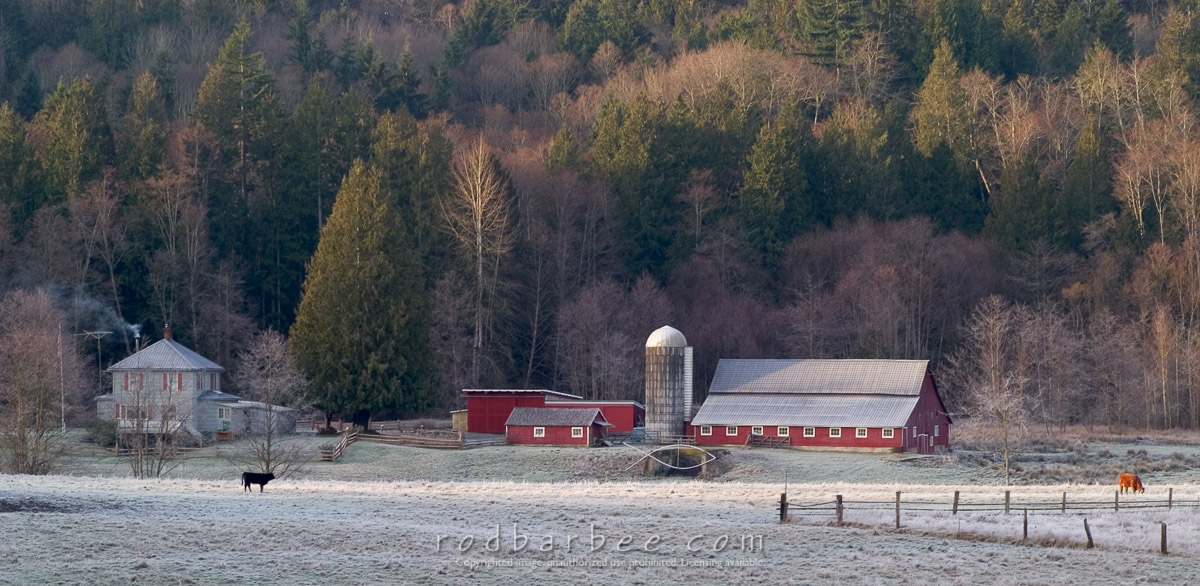 Barbee_0406_1_9104 |  Barn and farmland on Big Valley Road