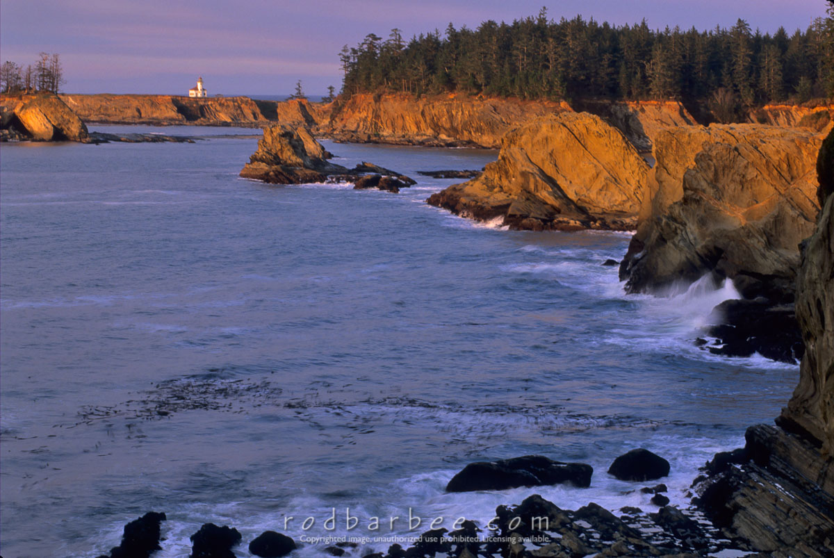Barbee_12685 |  Cape Arago lighthouse