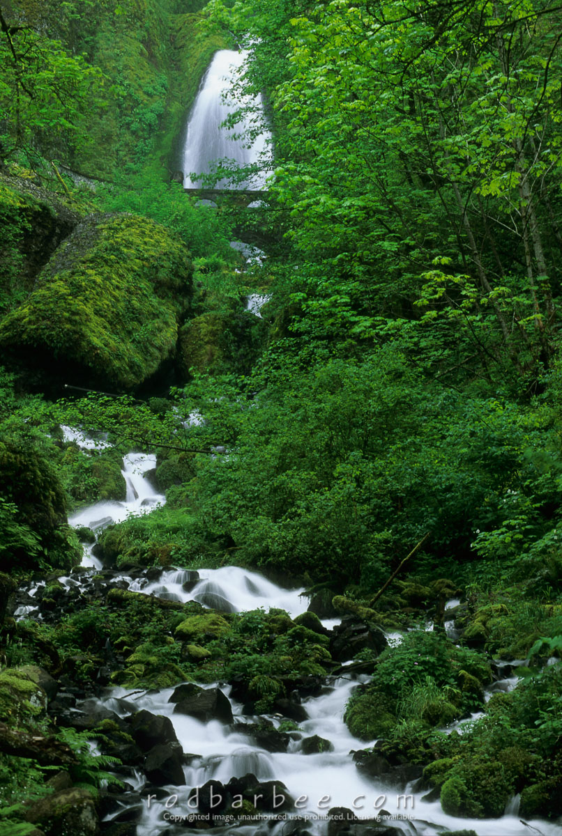 Barbee_13658 |  Wahkeena Falls, Columbia Gorge National Scenic Area, OR